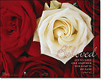 Red & White Rose Beloved Wedding Programs - Pkg 100