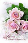 Love, Yesterday Tomorrow & Forever Pink Roses Blank Wedding Programs - Pkg 100