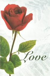 Love Red Rose Blank Wedding Programs - Pkg 100