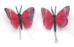 2.5 Hot Pink Feather Butterfly - Pkg 2
