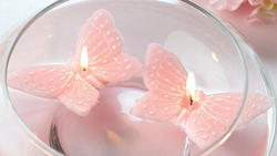 Butterfly Floating Candles - 3 Colors - Pkg 2