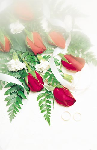 Red Roses Rings Wedding