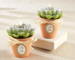 Desert Rose Cactus Candle (Set of 4)