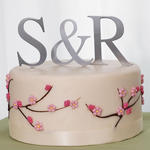 Brushed Silver Monogram Cake Topper - 2 Sizes