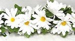 5' Daisy Chain Garland - Colors!