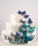 Beautiful Butterfly Cake Set - Colors!