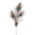 Triple Peacock Feather