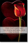 One in Love Red Rose & Heart Wedding Programs - Pkg 100