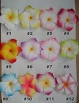 Plumeria Foam Floating Flowers - Pkg 24