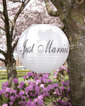 14 Just Married Paper Lantern - 2 Colors!