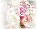 Pink Roses Our Wedding Day Blank Programs - Pkg 100