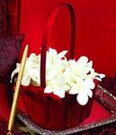 Serenade Crimson Flower Girl Basket