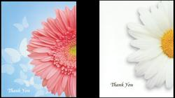 Daisy Theme Thank You Cards - 2 Design Choices!