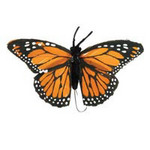 4 Orange Monarch Feather Butterfly