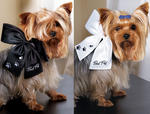 Best Pet Wedding Bow for Pet