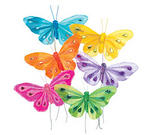 3.25 x 5 Butterfly Pick - Colors!