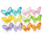 8 x 11 Butterfly Assortment - Pkg 12