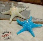 7 1/2 Starfish Candle - 2 Colors!